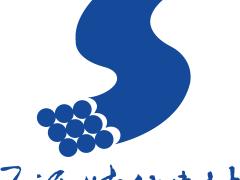 SY-B1早强泵送剂-武汉早强泵送剂-武汉三源
