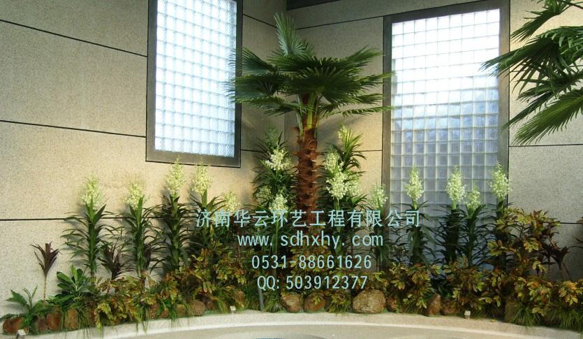 315消费推荐济南好的椰子树制作安装厂家—华云环艺