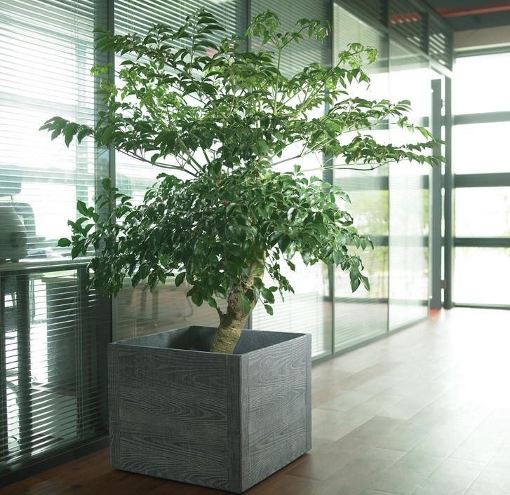广州花盆厂家直销简约多肉植物迷你创意花盆水泥多肉花盆